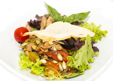 Salad with vegetables and meat Royalty Free Stock Photo