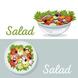 Salad vegetables nutrition dinner poster. Vector illustration eps 10 Royalty Free Stock Images