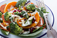Salad with vegetables, pepperoni and pomergranate Stock Photos