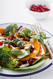 Salad with vegetables, pepperoni and pomergranate Royalty Free Stock Image