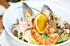 Salad with vegetables and seafood Stock Image