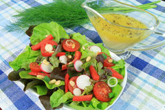 Salad and vinegret Royalty Free Stock Image