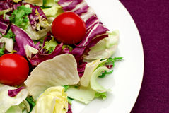 Salad in violet Royalty Free Stock Photography