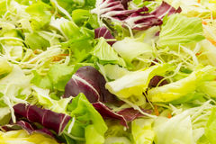 Salad wallpaper Royalty Free Stock Images