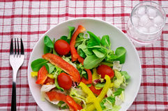 Salad with water glass Royalty Free Stock Photography