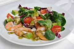 Salad of watercress salad with shrimp and avocado Stock Photography