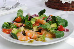 Salad of watercress salad with shrimp and avocado Stock Photo
