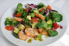 Salad of watercress salad with shrimp and avocado Royalty Free Stock Photo