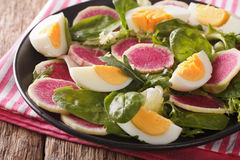 Salad of watermelon radishes, eggs, spinach and lettuce mix clos Royalty Free Stock Photo