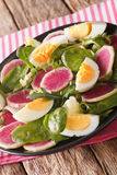 Salad of watermelon radishes, eggs, spinach and lettuce mix clos Stock Photography