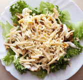 Salad whit cheese Royalty Free Stock Image