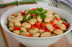 Salad with white beans and fresh herbs Royalty Free Stock Photo