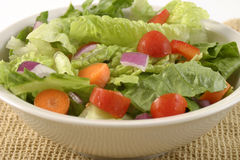 Salad in a White Bowl. Garden salad with lettuce, red onions, carrots, and tomatos Royalty Free Stock Photo