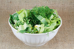 Salad in white bowl Stock Images