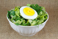 Salad in white bowl Royalty Free Stock Image