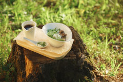 Salad in white bowl on a background of nature Stock Images