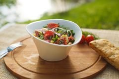 Salad in white bowl on a background of nature Royalty Free Stock Photos