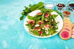 Salad in white plate around Ingredient. Mix leaf radish,lettuce, mangold, parsley,  arugula, almond, salt, tasty, balsamic, pepper. Healthy, diet Clear food Stock Images
