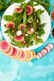 Salad in white plate around Ingredient. Mix leaf radish,lettuce, mangold, parsley,  arugula, almond, salt, tasty, balsamic, pepper. Healthy, diet Clear food Stock Image