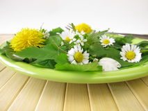 Salad with wild herbs Royalty Free Stock Image