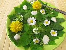 Salad with wild herbs. On green plate stock images