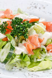 Salad wish fish Royalty Free Stock Photo