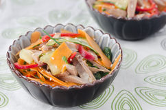Salad With Peppers, Cucumber, Beef Tongue Stock Photos