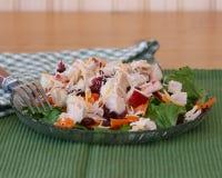 Salad With Turkey Stock Image