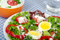 Salad with Yogurt Dressing Stock Image