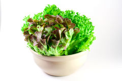 Salad For Your Health Stock Photography