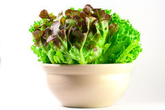 Salad For Your Health Stock Photos