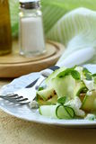 Salad of zucchini, cucumber and  cheese Stock Image