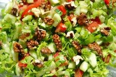 Salad1 Immagine Stock Libera da Diritti