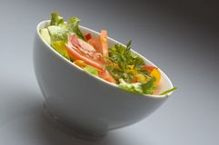 Salad2 immagine stock