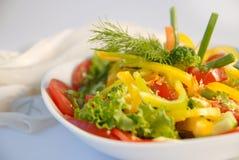 Salad4 luminoso Fotografie Stock Libere da Diritti