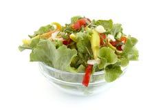 Salada 1 imagens de stock royalty free