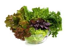 Salada. Imagem de Stock