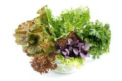 Salada. Fotos de Stock