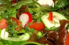 Salada #2 Foto de Stock Royalty Free