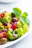 Salada fotografia de stock