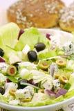 A salada Imagem de Stock Royalty Free