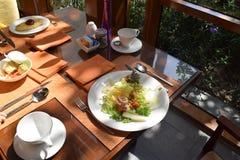Salada Стоковое Фото