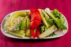 Salada 07 Fotos de Stock Royalty Free