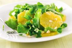 Salada alaranjada imagens de stock royalty free