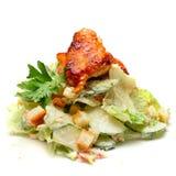 Salada - alimento de gourmet Fotografia de Stock