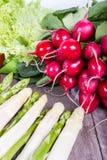 Salada, asparagu e rabanetes para uma refeição saudável Fotos de Stock