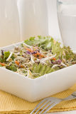 Salada Assorted dos sprouts. Foto de Stock Royalty Free