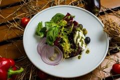 Salada branca do queijo Imagem de Stock Royalty Free