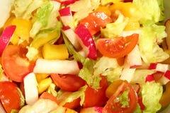 Salada brilhante Fotos de Stock
