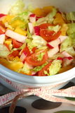Salada brilhante Fotos de Stock Royalty Free